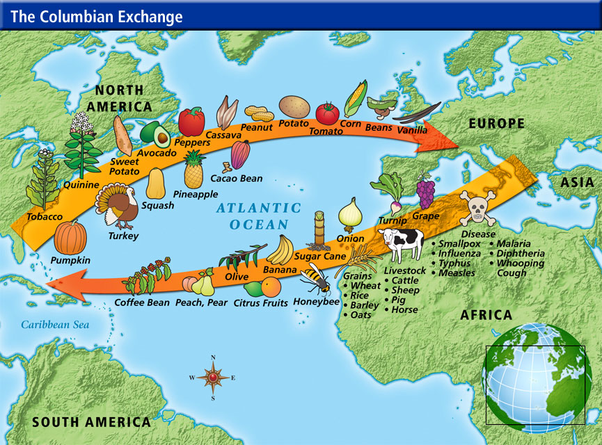 the influence and support of the transatlantic trade route between britain africa and the caribbean  An introduction to various resources outlining the historical background to the slave trade to the west coast of africa the transatlantic route.